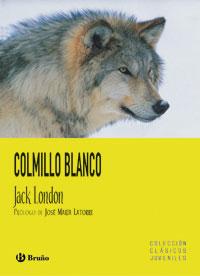 COLMILLO BLANCO.