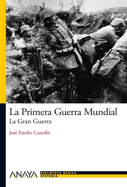 LA PRIMERA GUERRA MUNDIAL : LA GRAN GUERRA