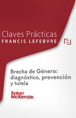 CLAVES PRÁCTICAS BRECHA DE GÉNERO: DIAGNÓSTICO, PREVENCIÓN Y TUTELA.