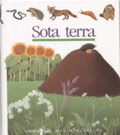 C-MOM. 6 SOTA TERRA.