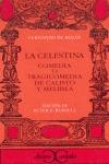 CELESTINA CC