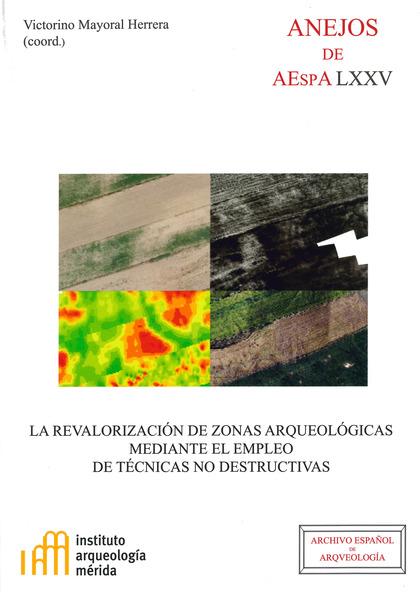 REUNIÓN CIENTÍFICA ´LA REVALORIZACIÓN DE ZONAS ARQUEOLÓGICAS MEDIANTE EL EMPLEO DE TÉCNICAS NO