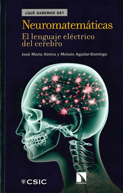 NEUROMATEMÁTICAS: EL LENGUAJE ELÉCTRICO DEL CEREBRO