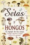 SETAS Y HONGOS.