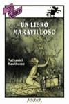 UN LIBRO MARAVILLOSO
