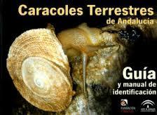CARACOLES TERRESTRES DE ANDALUCIA