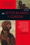 LOS SETTER IRLANDÉS Y GORDON