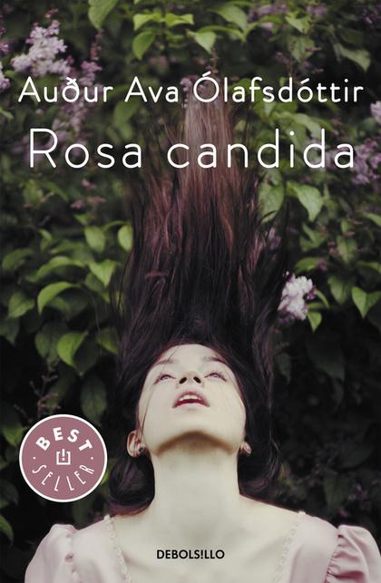ROSA CANDIDA.
