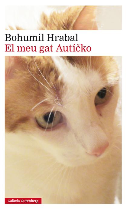EL MEU GAT AUTÍCKO- EBOOK.