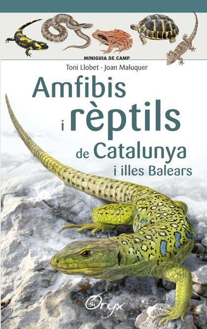 AMFIBIS I REPTILS DE CATALUNYA.