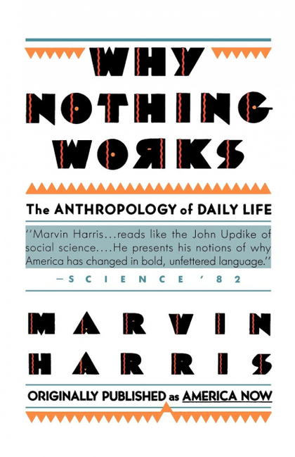 WHY NOTHING WORKS : THE ANTHROPOLOGY OF DAILY LIFE