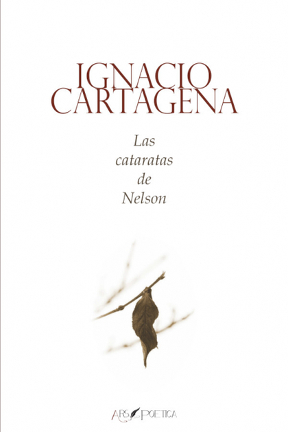 LAS CATARATAS DE NELSON.