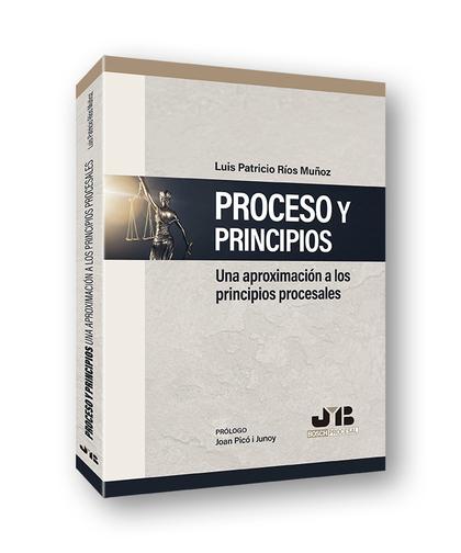 PROCESO Y PRINCIPIOS UNA APROXIMACION A LOS PRINCIPIOS PROC