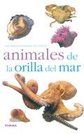 ANIMALES DE LA ORILLA DEL MAR