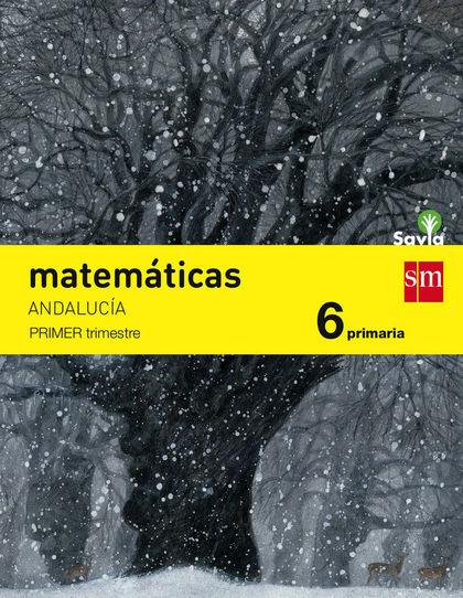 6EP.(AND)MATEMATICAS TRIM.-SA 15.