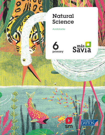 6 EP NATURAL SCIENCE (AND) MAS SA 19.