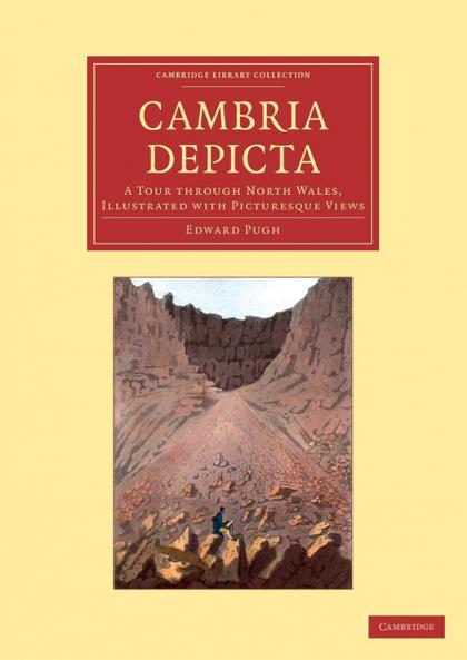 CAMBRIA DEPICTA