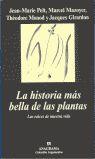 LA HISTORIA MÁS BELLA DE LAS PLANTAS: LAS RAÍCES DE NUESTRA VIDA