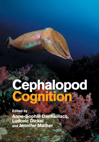 CEPHALOPOD COGNITION