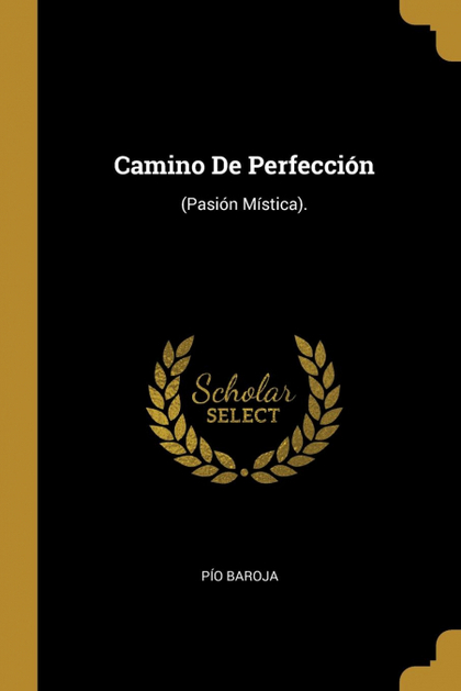 CAMINO DE PERFECCIÓN. (PASIÓN MÍSTICA).