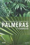 PALMERAS Y CICADÁCEAS