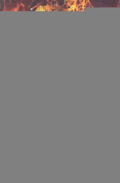 NATURISMOS EL PENSAMIENTO ECOLOGICO EN AFORISMOS