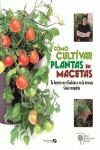 CÓMO CULTIVAR PLANTAS EN MACETAS : TU HUERTO EN EL BALCÓN O EN LA TERRAZA