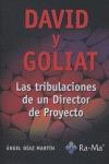 DAVID Y GOLIAT: LAS TRIBULACIONES DE UN DIRECTOR DE PROYECTO