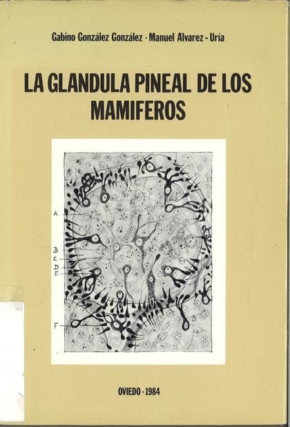 GLÁNDULA PINEAL DE LOS MAMÍFEROS, LA