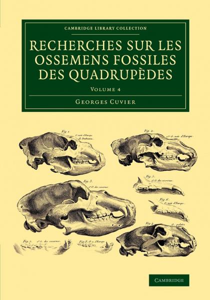 RECHERCHES SUR LES OSSEMENS FOSSILES DES QUADRUPÈDES - VOLUME             4