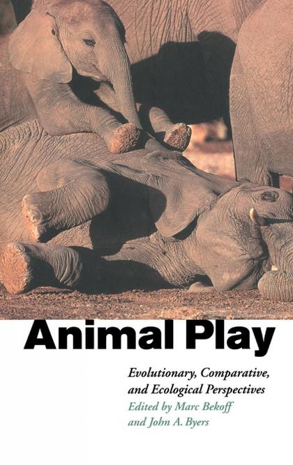 ANIMAL PLAY.