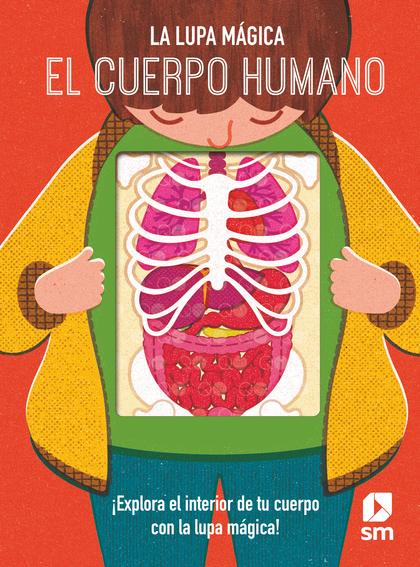 CUERPO HUMANO, EL